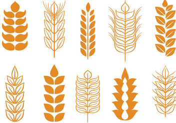 Free Wheat Stalk Vectors - Free vector #371535