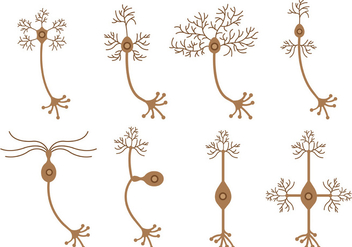 Set Of Neuron Vector - Free vector #372965