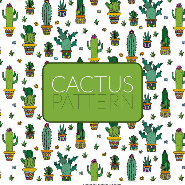 Illustrated cactus pattern - vector gratuit #373075