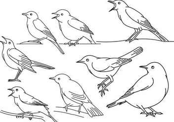 Nightingale Outline Set - Free vector #373575