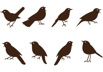 Free Nightingale Vectors - Free vector #376005