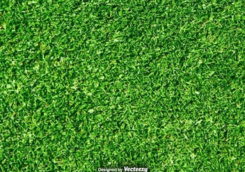 Lawn Nature - Green Grass Vector Background - Kostenloses vector #376285