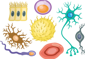 Free Neuron Icons Vector - бесплатный vector #380695