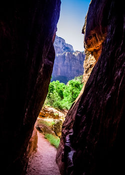 A Slot in Zion Canyon - бесплатный image #380995
