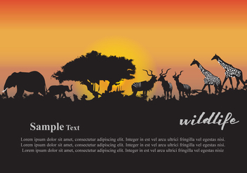 Animals Sunset - vector gratuit #382175