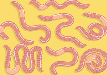 Free Earthworm Icons Vector - Free vector #383225