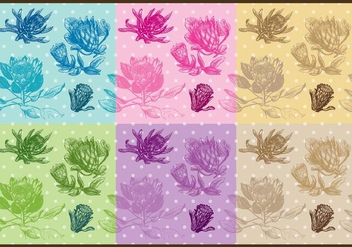 Protea Patterns - Free vector #383805