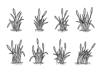 Cattails Hand Drawing Vector - бесплатный vector #385825