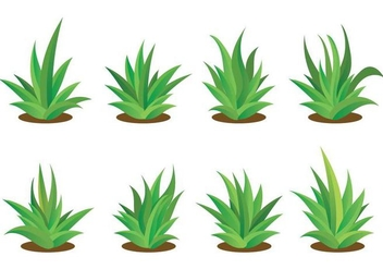 Free Maguey Vector Set - бесплатный vector #386305