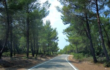 Turkey (Izmir-Urla) Probably this road goes to paradise - Kostenloses image #387075