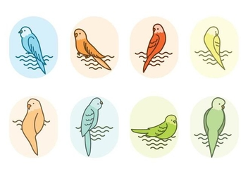 Free Budgie Vector - Free vector #388325