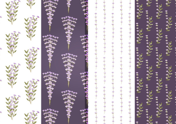 Vector Lavender Floral Patterns - vector gratuit #391405