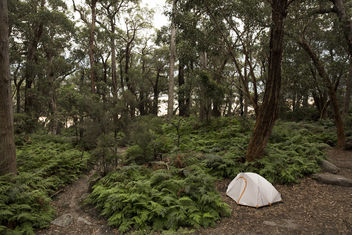 Alone in Paradise Camp Site - Kostenloses image #393225