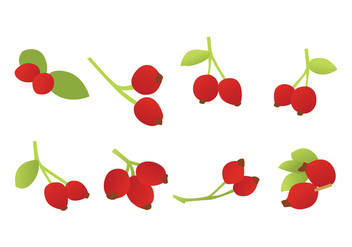 Free Rosehip Vector - Free vector #394215