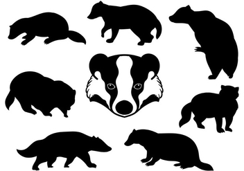 Free Honey Badger Icons Vector - бесплатный vector #394255