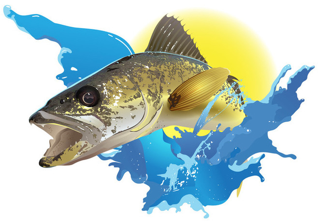 Walleye Jumping - vector gratuit #395035