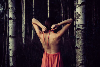 Backless dress in the woods - бесплатный image #400625