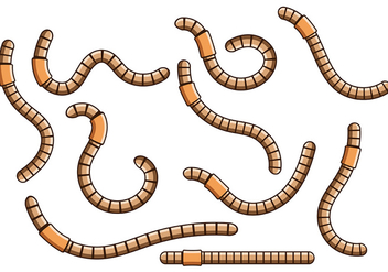 Earthworm Vector 4 - бесплатный vector #401925