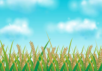 Free Rice Field Vector Illustration - бесплатный vector #402085