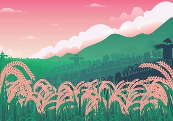 Free Rice Field Illustration - бесплатный vector #402445