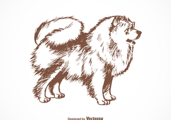 Free Pomeranian Dog Vector Illustration - бесплатный vector #402835