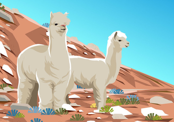 Alpaca At The Desert - Free vector #403025