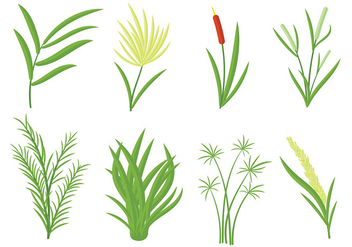 Free Reeds Icons Vector - Free vector #403155