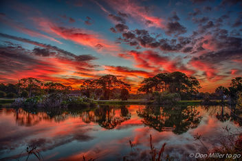 Firey morning at the Rookery - image gratuit #403515