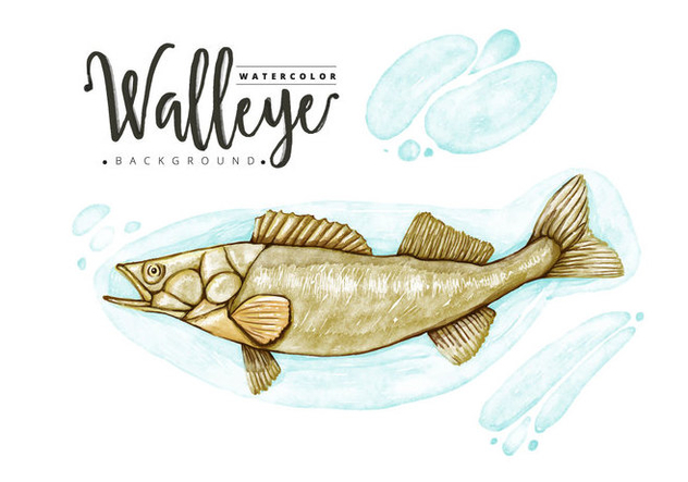 Free Walleye Background - Free vector #403605