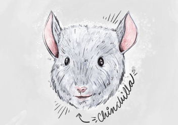 Free Chinchilla Background - vector gratuit #405935
