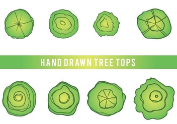 Free Hand Drawn Tree Tops Vector - Free vector #406045