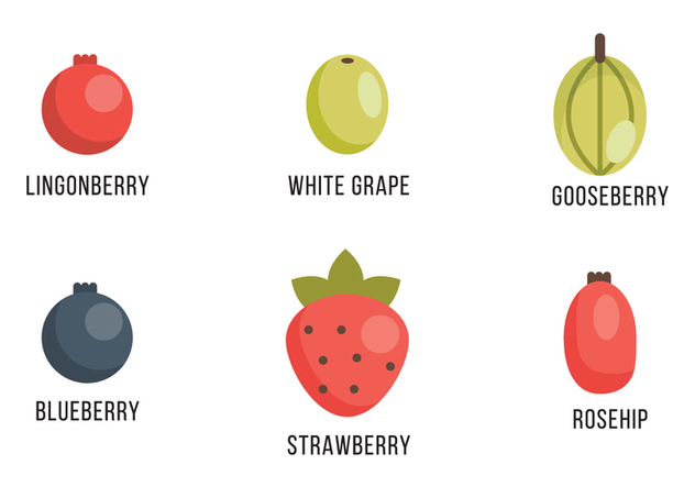 Selection of Berries and Grapes - бесплатный vector #407205