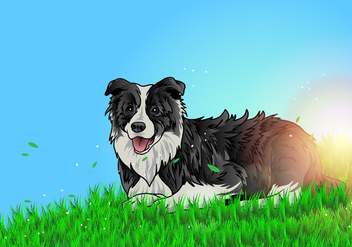 Border Collie Lay On The Ground - Free vector #409755
