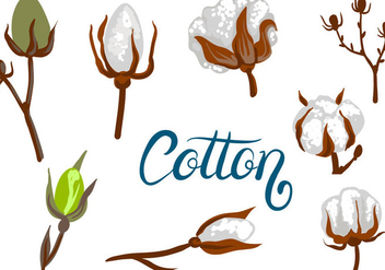 Free Cotton Vectors - бесплатный vector #411145