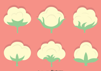 Cotton Flowers Vector Set - vector gratuit #411775