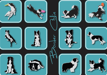 Border Collie Icon - vector #412035 gratis