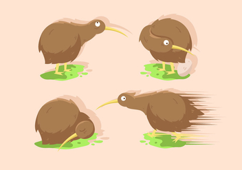 Kiwi Bird Vector Illustration Sets - Free vector #418815