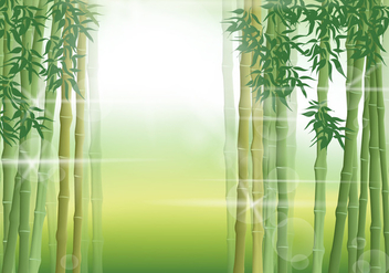Bamboo Scene In The Morning - vector gratuit #419865