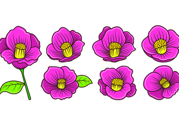 Set Of Camellia Vectors - Free vector #420525