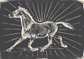 Vintage Horse Illustration - Free vector #422495