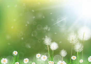 Beautiful Dandelion Background - vector gratuit #423595