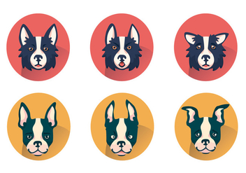Border Collie Vector Set - Kostenloses vector #424735