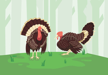Wild turkey green forest illustration - бесплатный vector #426115