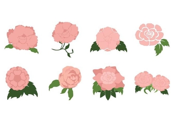 Free Romantic Camellia Flower Vector - Free vector #426145