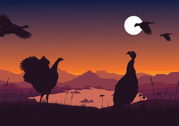 Wild Turkey Night Free Vector - Free vector #426185