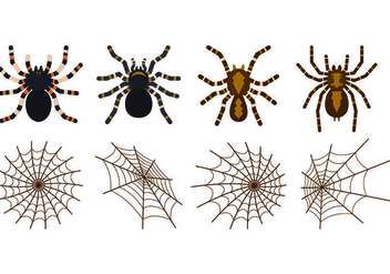 Set Of Tarantuala Vectors - Free vector #427265