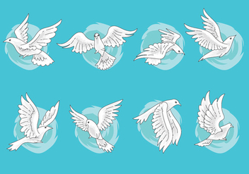 Set of Paloma or Dove Vectors with Hand Drawn Style - vector gratuit #428425