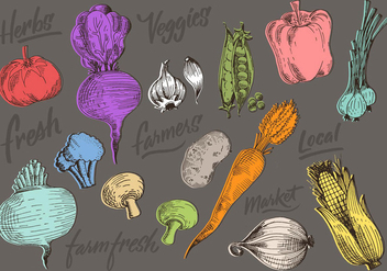 Color Vegetables Doodles - vector gratuit #429095