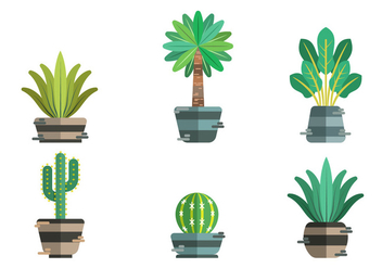 Yucca Vector Item Pack - Free vector #429235