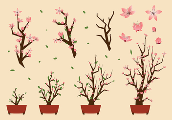 Peach Blossom Free Vector - Free vector #429935